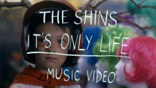 The Shins 'It's Only Life' music video